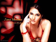 Tara Sharma 020 Wallpaper:  http://www.indianstars.net/details.php?image_id=6877 #TaraSharma #TaraSharmawallpapers #TaraSharmaphotographs
