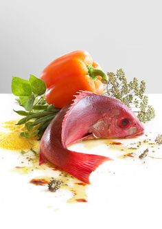 commercial, editorial, food, still life and product photography, Red Snapper Still Life