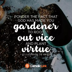 "Catherine of Siena ""Ponder the fact that God has made you a gardener to root out vice and plant virtue"" Feast: OP Catholic Religion, Catholic Quotes, Catholic Prayers, Jesus Quotes, Wisdom Quotes, Be Inspired Quotes, St Catherine Of Siena, Quotes En Espanol, Jesus Resurrection"