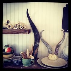 Honeycomb Studio Vignette - antlers, plates and bells