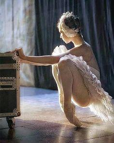 Rosy Ballet Dreams