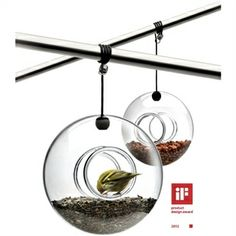 Hand-blown glass bird feeder with fixture that can be attached to a branch or under an overhang | Eva Solo Collection