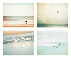 Seagull Bird Photography Set - beach bird photo print set - pastel pale bird flying sky - ocean wall art seashore - Four 8x10 Photographs.