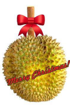 I love getting durian as a gift! Here are six other gift ideas for durian junkies: http://www.yearofthedurian.com/2012/12/six-christmas-gifts-for-durian-junkies.html
