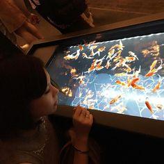 【jasmine_v3v】さんのInstagramをピンしています。 《○Instagram公表ver.○ すみだ水族館行ってきたよ♡♡ #すみだ水族館 #アクアリウム #金魚#ママ#ママコーデ #メンズママ #プチプラコーデ  #今日のコーデ 👚#しまむら 👖 #楽天 👜#アーバンリサーチ 💍#fendi》