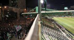 Panathinaikos's Fans Football, Fan, Sports, Hs Sports, Futbol, American Football, Sport, Soccer Ball, Soccer