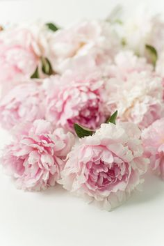 Peonies are so pretty.