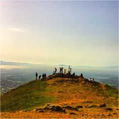 Mission Peak, Fremont - Amazing Hike. Great Workout. You Cannot Imagine the View From the Top...Come On Boots, Let's Get Walkin'