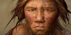 Hadden de Neanderthalers een eigen taal? - Scientias.nl Neanderthalers en de moderne mens blijken meer met elkaar gemeen te hebben dan we denken. Neanderthalers hadden mogelijk seks met homo sapiens. Ook leerden zij om gereedschappen en verfijnde lichaamsversieringen te maken door stiekem te kijken hoe de moderne mens dat deed. Twee onderzoekers uit Nijmegen denken dat Neanderthalers ook een eigen taal hadden. De grote vraag is: wat voor taal?