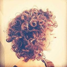 Curly-Lob.jpg 500 × 498 pixlar