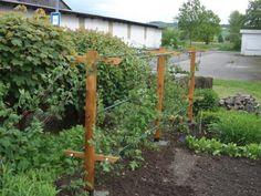 Garden Yard Ideas, Edible Garden, Trellis, Outdoor Structures, Flowers, Plants, Diy, Garage, Gardening