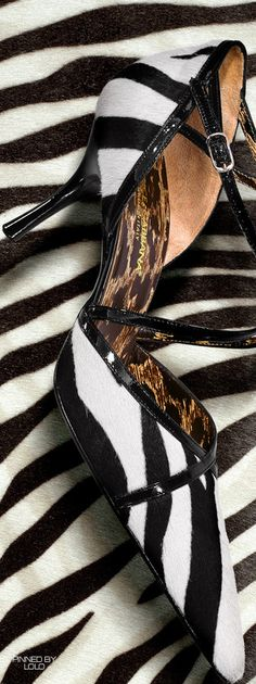 Saint Laurent Zebra Print d'orsay Pump. Photo by Dan Forbes | House of Beccaria~