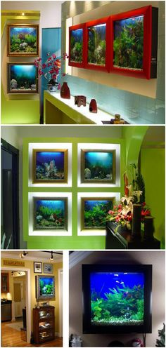 These are some awesome aquariums!