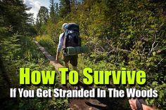 How To Survive If You Get Stranded In The Woods - SHTF, Emergency Preparedness, Survival Prepping, Homesteading