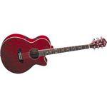 Washburn EA18TR Acoustic 6 String Guitar - At Acclaim Sound