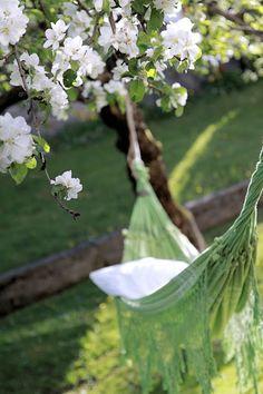 Love the green hammock.