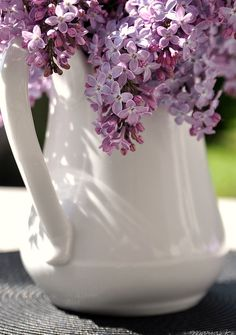 someday i will have a lilac bush in my yard so i can always have fresh lilacs in my house!