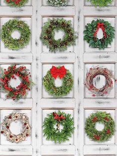A festive winter wall backdrop for the holiday season.<ul>    <li>Printed in bold color</li>    <li>Meshes well with props and Christmas clothing</li>    <li>Use while in a professional studio or in the home</li>    <li>Designed in the USA</li>    <li>Denny offers this design in vibrant Freedom Cloth, popular canvas, and hassle-free Twist Fle</li></ul>