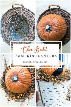 DIY Fall Olive Bucket Pumpkin Planters - new site Harvest Decorations, Thanksgiving Decorations, Seasonal Decor, Holiday Decor, Happy Thanksgiving, Autumn Decorating, Porch Decorating, Fall Outdoor Decorating, Pumpkin Decorating