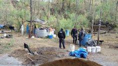 En Cheranguerán, policías federalesobservaron que varias personas, al percatarse de su presencia, corrieron hacia una huerta de aguacate; aseguraron distintos reactores, bidones, matraces, ollas de aluminio, tanques de gas y ...