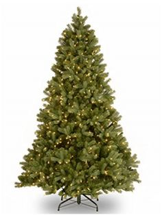 Feel Real® branch tip technology gives the Downswept Douglas Fir Christmas Tree from National Tree Company a naturally lush look. Pre-lit with Dual Color® LEDs that transition from white to multicolor with an easy to operate foot pedal switch. Douglas Fir Christmas Tree, Full Christmas Tree, Douglas Fir Tree, Best Artificial Christmas Trees, Beautiful Christmas Trees, Artificial Tree, Christmas Gifts, Christmas Decorations, Christmas Ideas