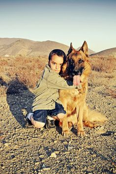 my best friend german shepherd | Recent Photos The Commons Getty Collection Galleries World Map App ...