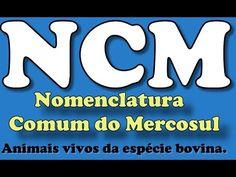 NCM - Tabela MDIC (Animais vivos da espécie bovina.)