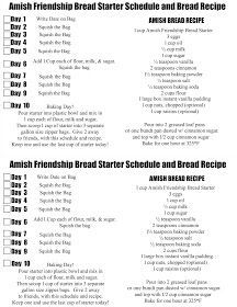 Amish Friendship Bread Starter and Recipe! - Food Meme - Doodlecraft: Amish Friendship Bread Starter and Recipe! The post Amish Friendship Bread Starter and Recipe! appeared first on Gag Dad. Friendship Bread Recipe, Friendship Bread Starter, Amish Friendship Bread, Amish Bread Recipes, Banana Bread Recipes, Dutch Recipes, Free Recipes, Amish Bread Starter, Vegan Scones