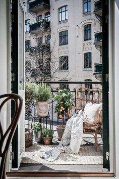 decoration balcon, tapis beige, petit arbre citron, chaise marron, plantes vertes
