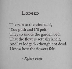 """Lodged"" by Robert Frost Poetry Robert Frost, Robert Frost Quotes, Romantic Love Quotes, Love Quotes For Him, Favorite Quotes, Best Quotes, Poetic Words, Inspirational Words Of Wisdom, Celebration Quotes"
