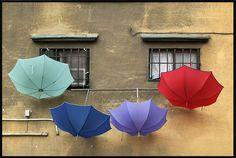 *umbrellas*
