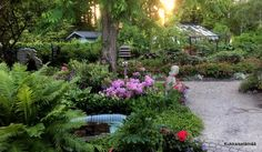 Kukkaiselämää - My Flowering Life