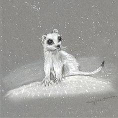Weasel Art Print Bigeyed Weasel Ferret Winter Snow 5 x by maryjill, $9.00