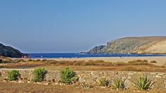 Fokos is a sandy beach with clear waters in the north of Mykonos.There is no public bus service and you will have to drive, with the last part being a dirt r. Greek Islands, Horse Riding, Mykonos, Gopro, Public, Horses, Adventure, Mountains, Beach