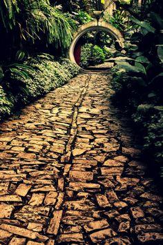 Let's go for a walk... Las Pozas, Xilitla, Mexico. #Mexico #awesome #nature #wonder