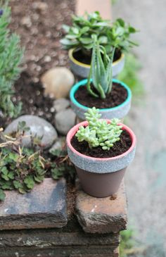 I would stop before the glitter step, but I just LOVE the neutral tone with the pop of color against the potting soil and plant.