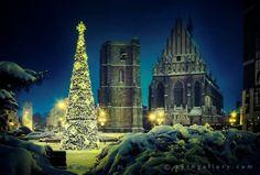 Nysa, Poland, https://www.facebook.com/photo.php?fbid=715835965101553&set=a.113265195358636.13588.111343195550836&type=1&theater