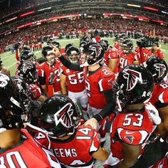 One more win & we're in. Playoff tickets for potential Wild Card round home game Falcons Football, Football Team, Football Helmets, Atlanta Falcons Rise Up, Nfc South, Birds, Seasons, Fan, Logo