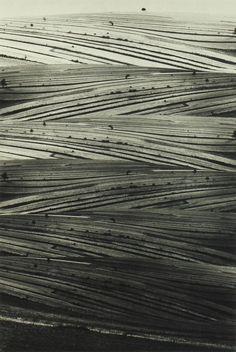 yama-bato:  Paweł Pierscinski Bands fields,1984 http://www.galeria-esta.pl/pokaz.php?id=1729