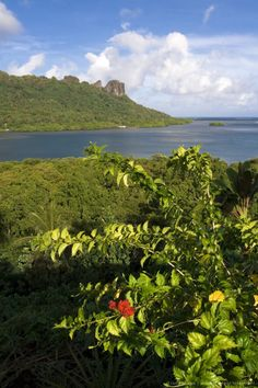 Panorama of the Sokhes Islands from Kolonia, Pohnpei, Federated States of Micronesia South Pacific, Pacific Ocean, Burial Vaults, Federated States Of Micronesia, Peace Corps, Island Nations, Ancient Ruins, Solomon Islands, Cook Islands