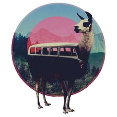 """Llama"" kids tee by Ali Gulec | RedBubble. $17.94 USD. Sizes 0 - 12 yrs. Price will vary. www.redbubble.com..."