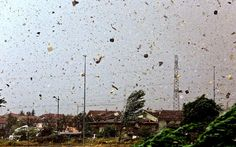 """Debris flies through the air as a tornado strikes between Grezzago and Trezzo in northern Italy."" July 2013, caption at link"