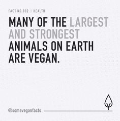 Many of the largest and strongest animals on earth are vegan. #wheredoyougetyourprotein #veganpower #govegan #vegan