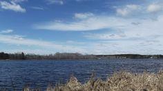W10756 Upper Lake Dr Gresham WI 54128
