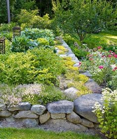 stone raised bed. website contains pictures of dry stone walls around the world