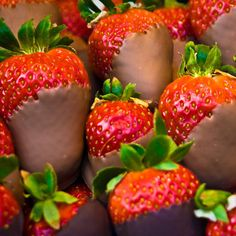 If your mom has a sweet tooth, this is the perfect gift for her. Melt some chocolate, and dip strawberries into the mixture. Place them on a baking tray, and Chocolate Coated Strawberries, Chocolate Covered, Covered Strawberries, Cheap Mothers Day Gifts, Italian Hot, Popsugar Food, Strawberry Dip, Dog Snacks, Healthy Treats
