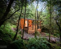 A beautiful rustic cabin in the woods with covered decking area and outdoor bath. A beautiful rust Eco Cabin, Log Cabin Homes, Tall Outdoor Planters, Luxury Log Cabins, Decking Area, White String Lights, Outdoor Baths, Cabins In The Woods, Holiday Lights