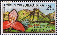 South Africa 1963 SG 223 Botanic Gardens Fine Mint SG 223 Scott 284 Condition Fine MNH Only one post charge applied on National Botanical Gardens, South Afrika, Gardens Of The World, Most Beautiful Gardens, You Are The World, Flower Stamp, African Safari, African History, Africa Travel