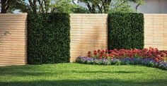 Build Fence & Privacy Protection yourself OBI garden planner- Zaun & Sichtschutz selber bauen Garden Fence Panels, Garden Fencing, Backyard Fences, Backyard Landscaping, Fence Screening, Garden Planner, Backyard Lighting, Fence Design, Amazing Gardens