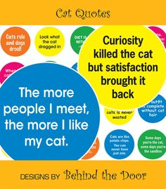 Cat Quotes digital collage sheet 1 inch by BehindTheDoor on Etsy